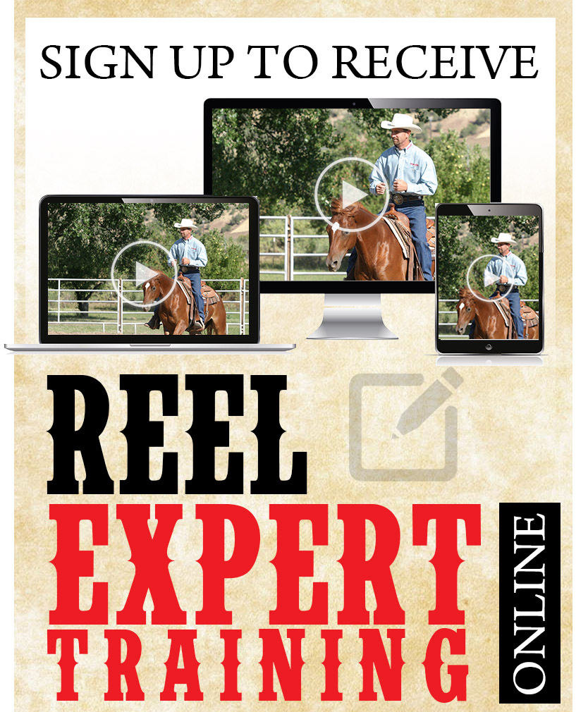 REEL Online Training